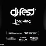 """Inicia el año al ritmo de Alesso y Steve Aoki """"DJ FEST 2015"""""""