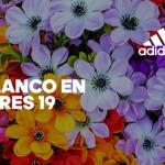 """Adidas Mazaryk será un """"Cosmo de Flores"""""""